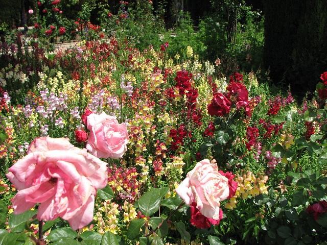 Generalife Jardins
