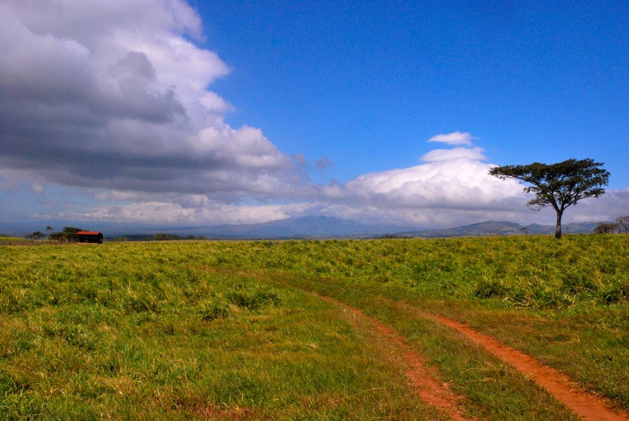 Sur la route Mawoui