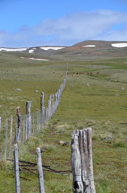 Les terres de Julian Argentine El Calafate