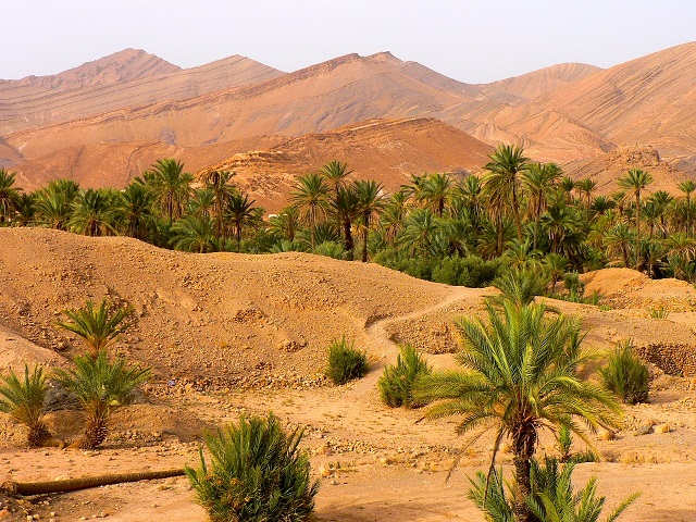 Maroc Johann Chabert