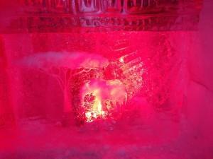 resto de glace Amarula Laval