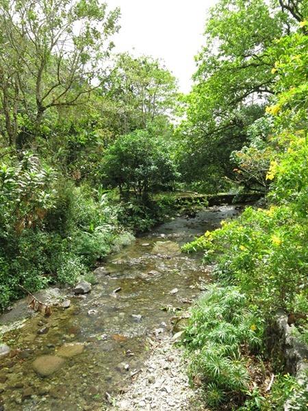 Canopy Lodge ruisseau