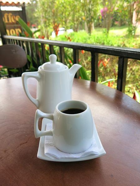 Gesha_Café_Ruiz_Boquete_Panama