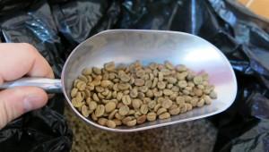 torréfaction de café Panama Boquete