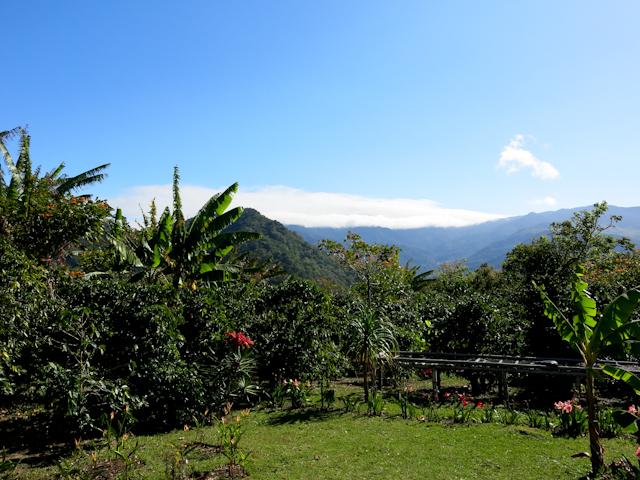 Boquete montagnes du Panama
