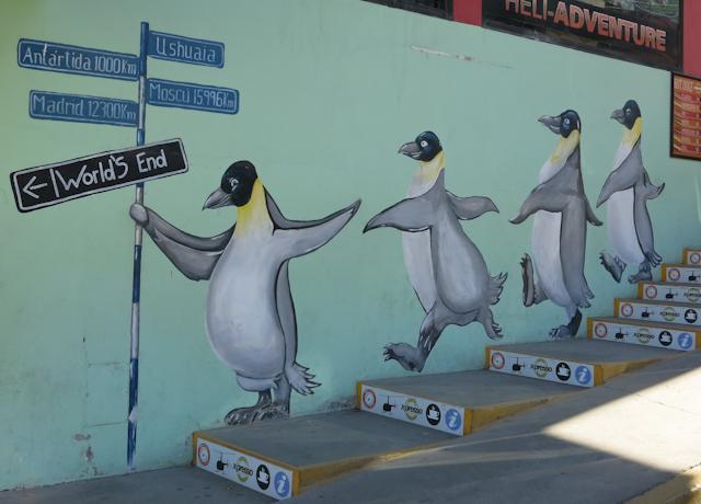 Les pingouins du bout du monde