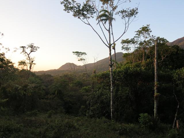 nature Santa Fe Panama