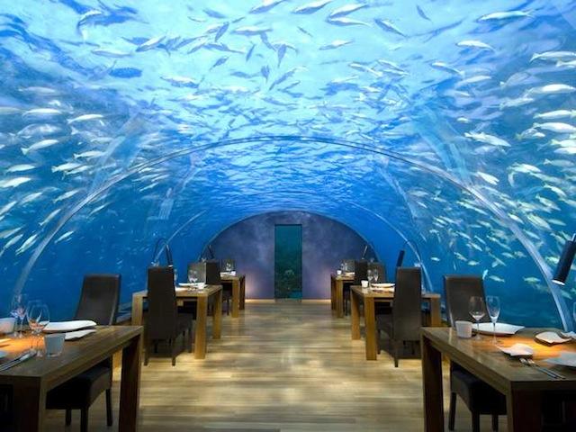 Le restaurant sous l'eau Ithaa aux Maldives (image extraite ici).