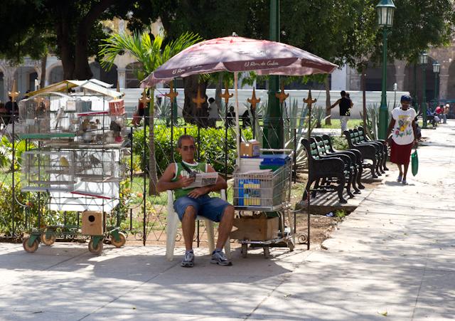 Vendeur d'oiseaux, La Havane, Cuba