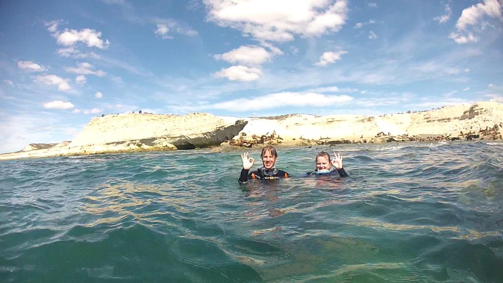 Devant les lions de mer - Lobo Larsen - Puerto Madryn, Argentine