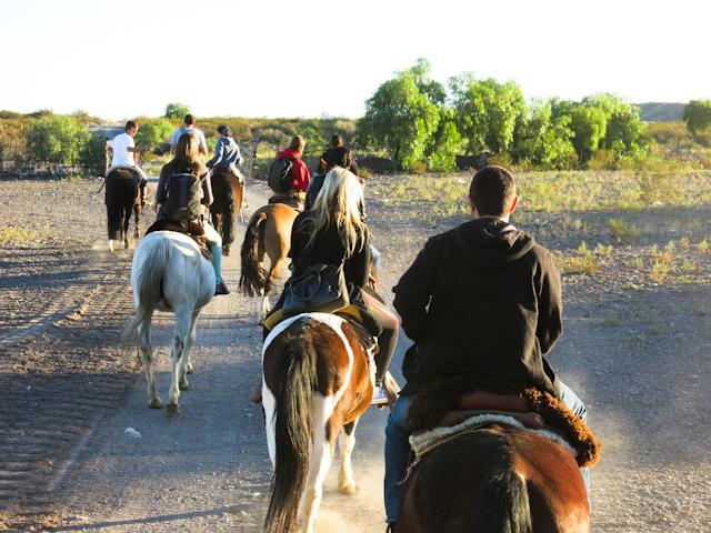 En route pour une balade au coucher de soleil - Mendoza, Argentine