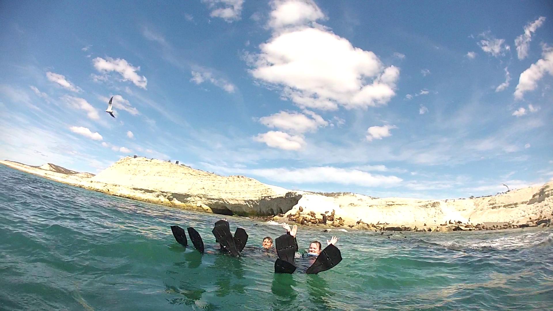Pratique des techniques de nage - Lobo Larsen - Puerto Madryn, Argentine