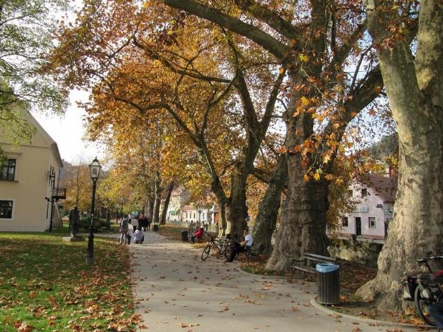 Ah l'automne, temps idéal pour voyager