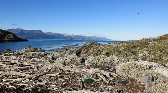 Vue de l'Isla H - Ushuaia, Argentine