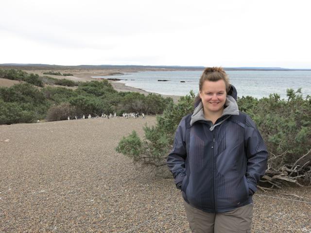 Petite visite chez les pingouins - Punta Tombo, Argentine