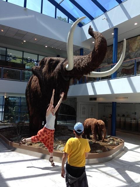 Sauter pour attraper un mammouth au musée à Brno