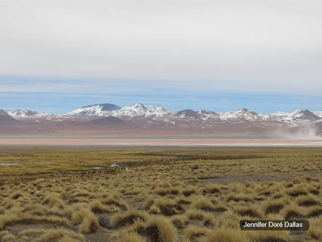 Laguna colorada - Désert de sel - Salar d'Uyuni, Bolivie