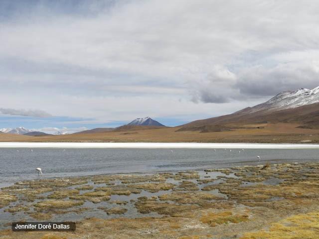 Lagune - Désert de sel - Salar d'Uyuni, Bolivie