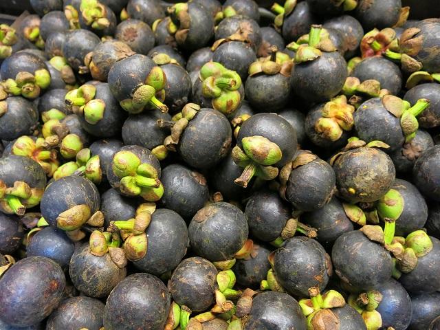 Les meilleurs fruits du monde, des mangoustines