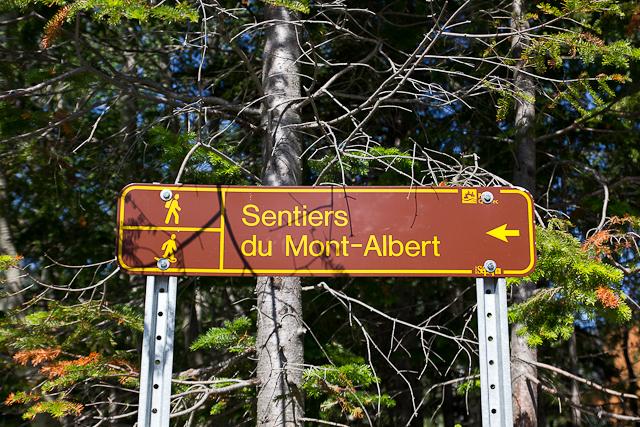 Affiche de sentier - L'Auberge Gîte du Mont-Albert, Gaspésie