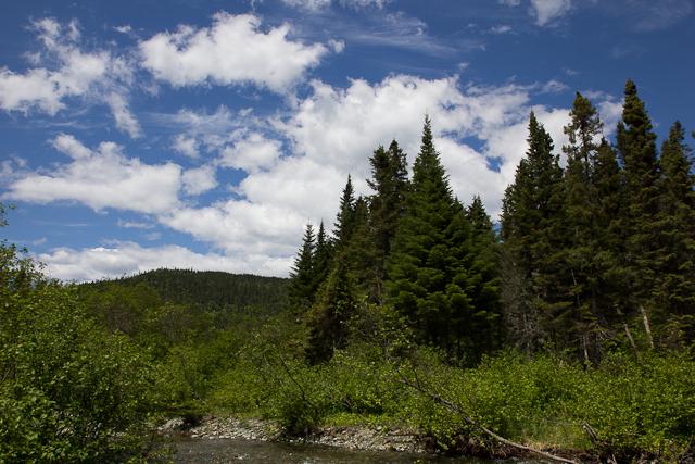 Ciel bleu sur la montagne - L'Auberge Gîte du Mont-Albert, Gaspésie