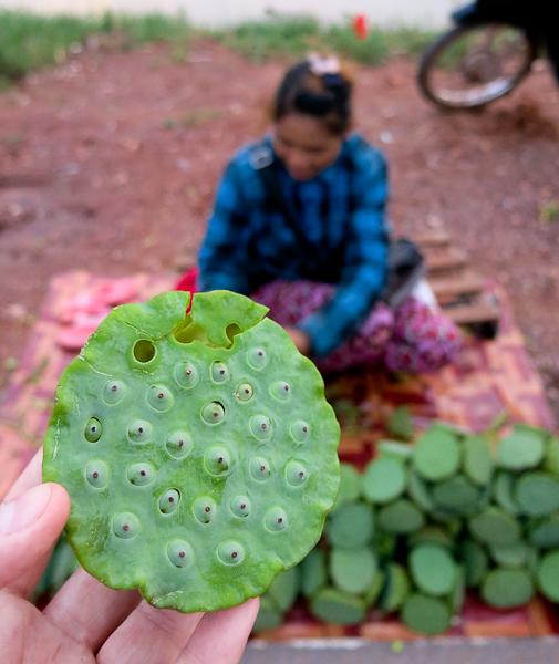Fleurs de lotus, un délice que je ne connaissais pas - Siem Reap Street Food By Night tour - Cambodge