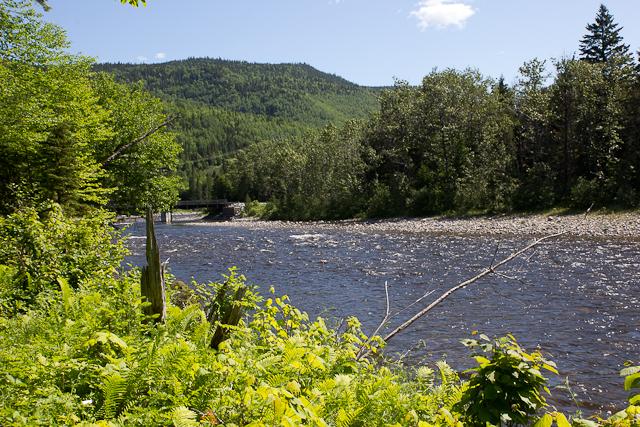 Sentier au bord de l'eau - L'Auberge Gîte du Mont-Albert, Gaspésie