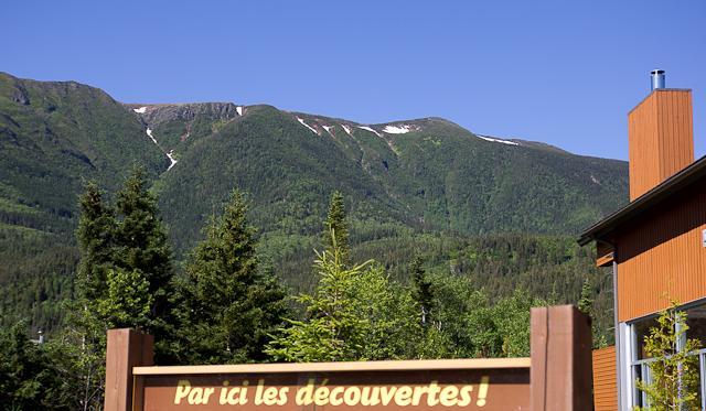 Vue sur le Mont-Albert - L'Auberge Gîte du Mont-Albert, Gaspésie