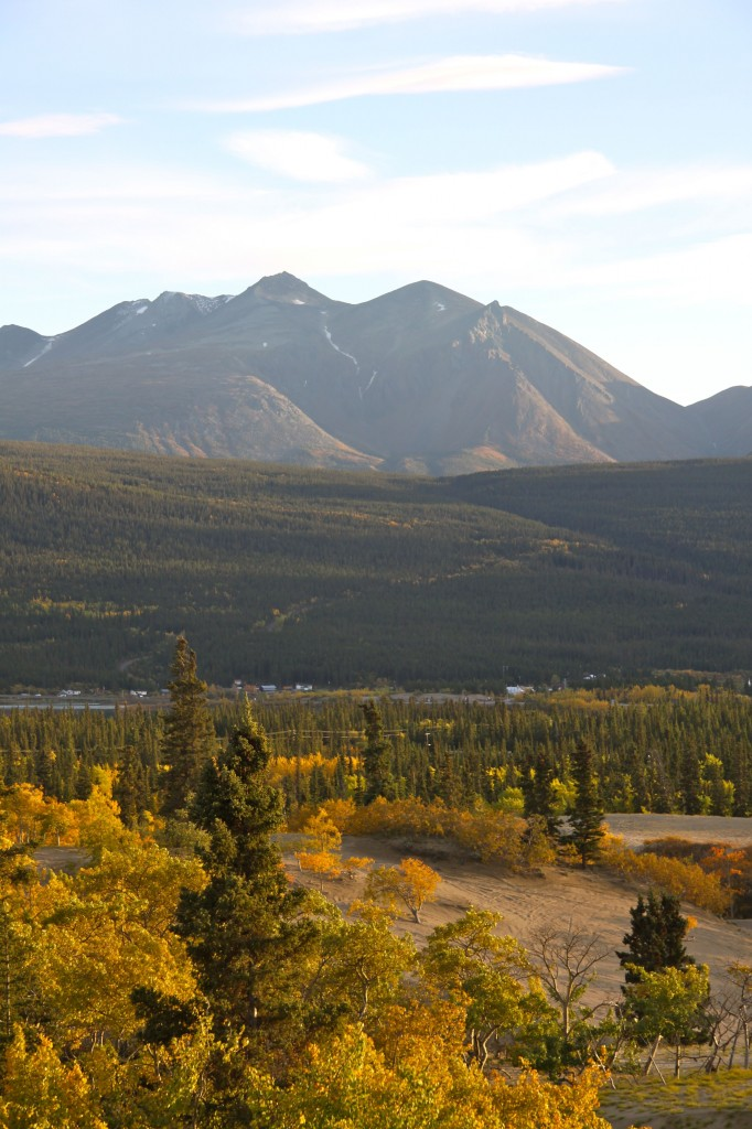 Montana Mountain, Carcross