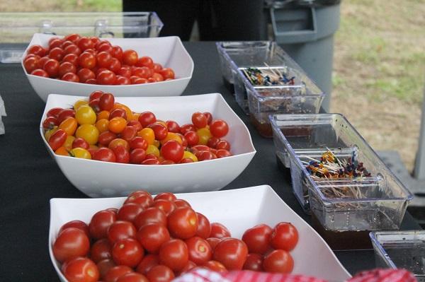 Tomates Savoura - Tremblant Gourmand