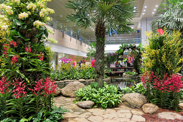 Aéroport de Singapour - Jardin intérieur