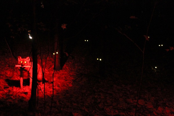 Loups-garous - De quoi ne plus jamais avoir envie de se balader dans une forêt un soir d'octobre!