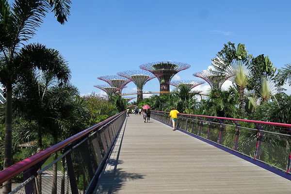 Promenade dans les Gardens by the Bay