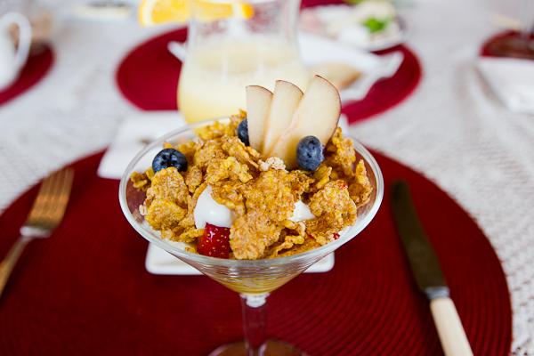 Déjeuner yogourt et fruits - Domaine de la Baie - Shawinigan, Mauricie