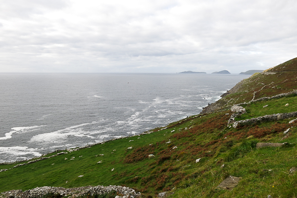 Mer - Dingle Peninsula - Irlande