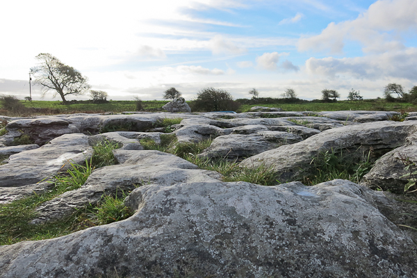 The Burren - Irlande (2)