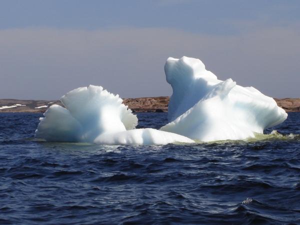 Iceberg en Basse-Côte-Nord