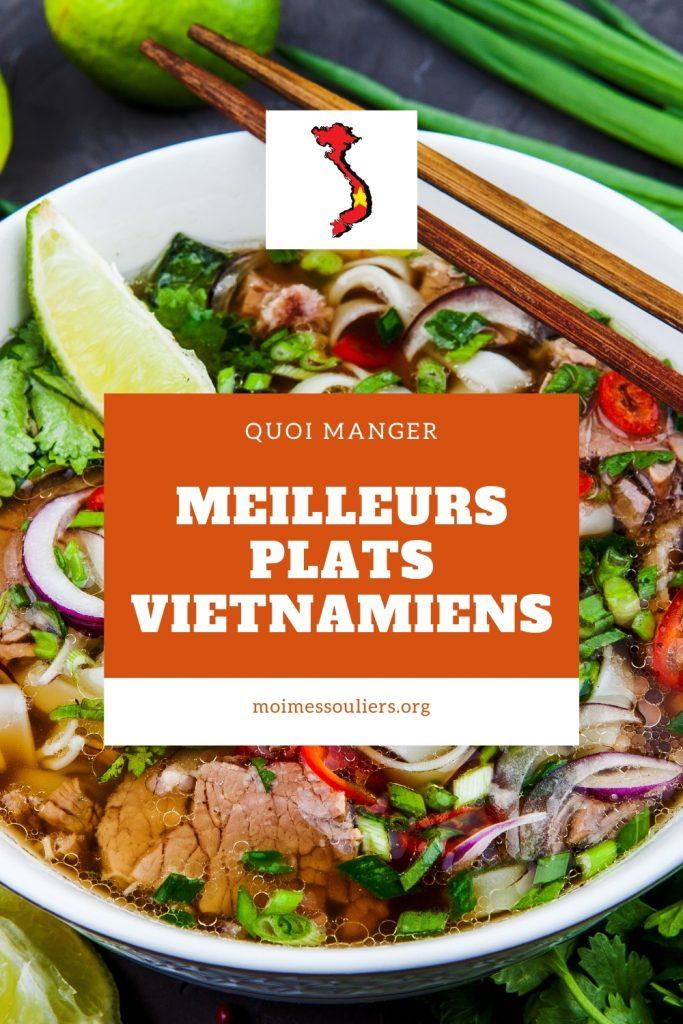 Meilleurs plats vietnamiens