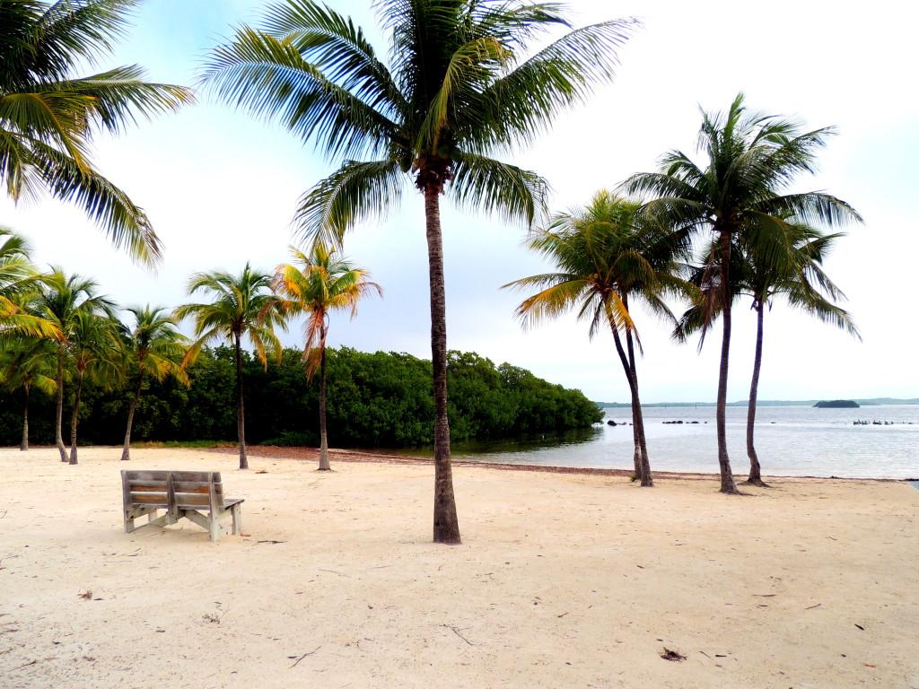 plage de Pennekamp park