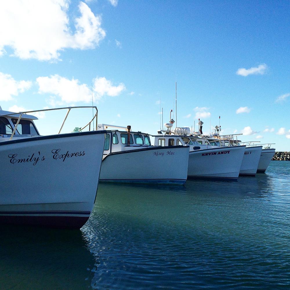 Au port - Îles-de-la-Madeleine