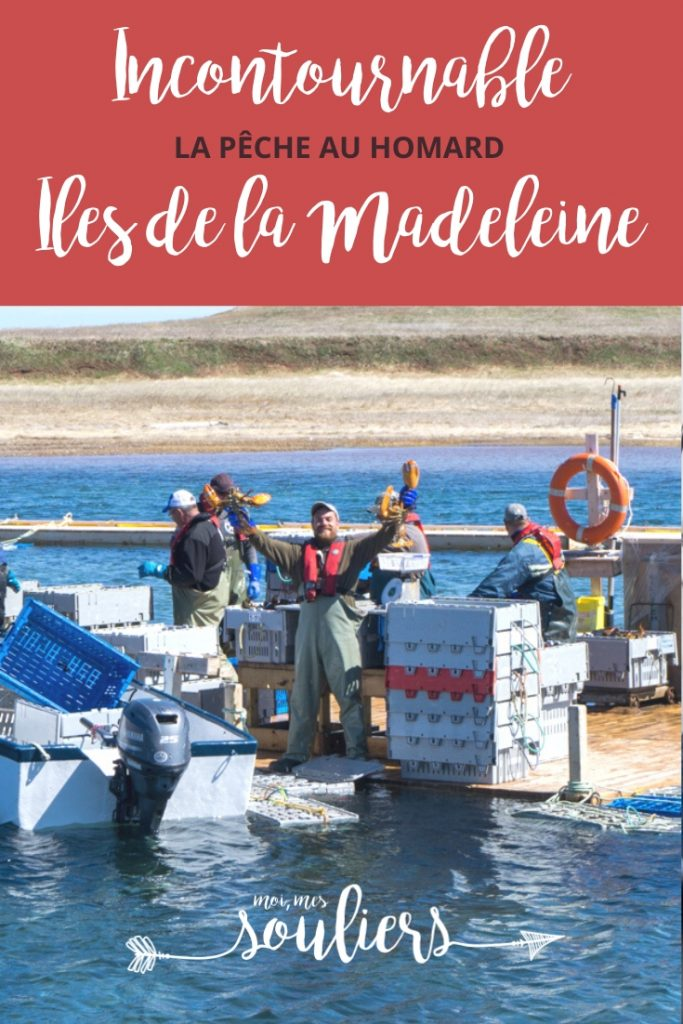 Pêche au homard Iles de la Madeleine