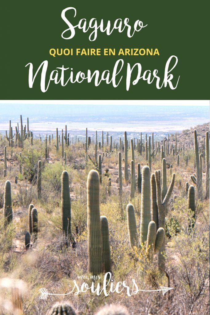 Quoi faire à Saguaro National Park Arizona