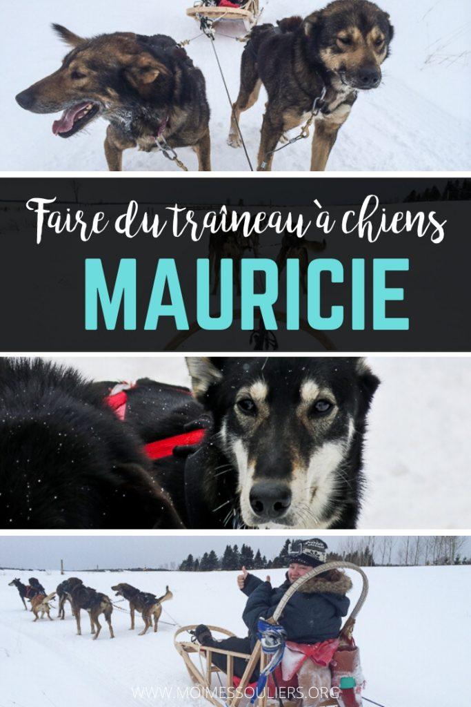 Faire du traîneau à chiens en Mauricie