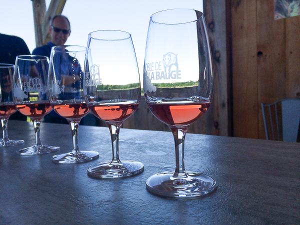 Dégustation plurisensorielle - Vignoble de La Bauge - Cantons de l'Est, Québec