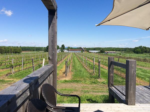 Terrasse - Vignoble de La Bauge - Cantons de l'Est, Québec