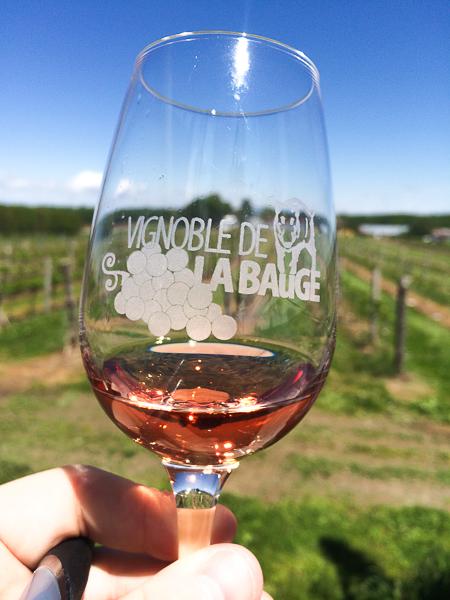 Vignoble de La Bauge - Cantons de l'Est, Québec