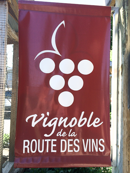 Vignobles de la route des vins