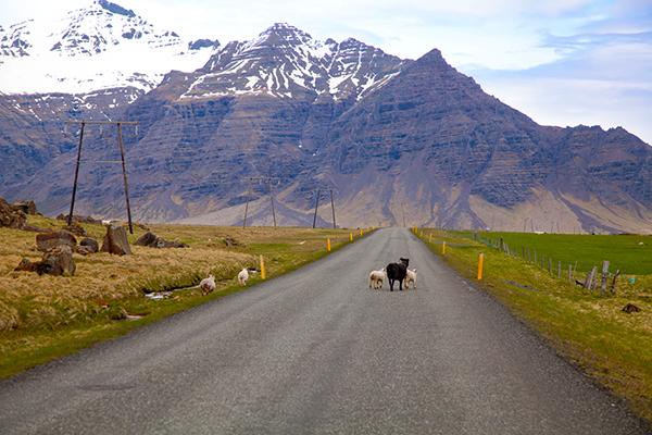 Faute d'avoir des photos pour le moment, j'emprunte celle de Claudia! Vous pouvez lire ses articles sur l'Islande en cliquant sur l'image.