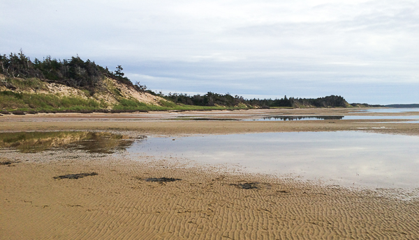 Plage - Pêche aux coques - Pointe-de-l'Est - Îles de la Madeleine