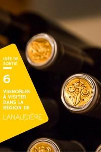 Idée de sortie - 6 vignobles de Lanaudière